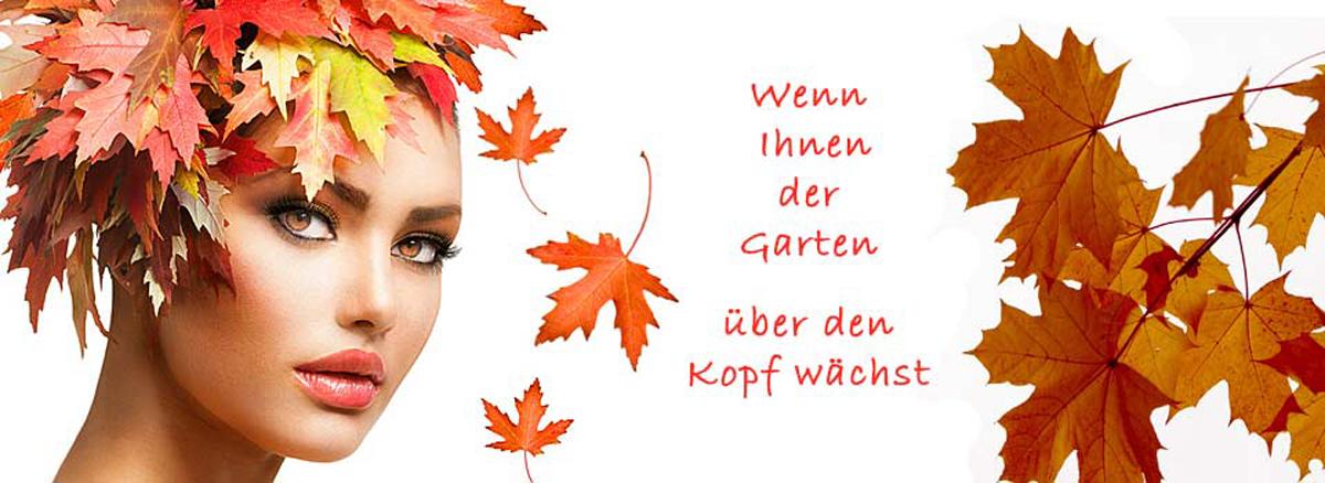 Baumfällung, Garten- und Landschaftsbau Verl - Martin Knabe: Baumpflege, Gartenarbeiten, Forstarbeiten, Sturmschaden, Zaunbau
